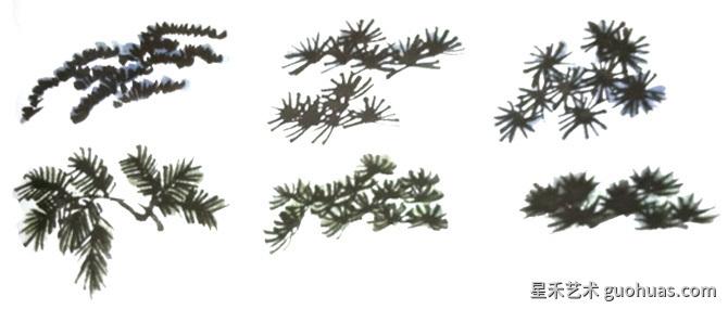 松树怎么画-松树形态