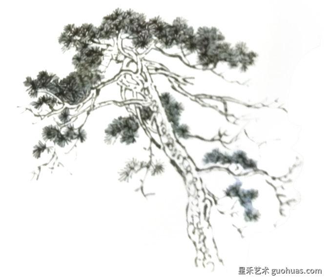 松树怎么画创作步骤详解