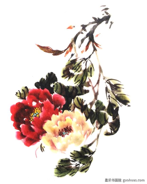 牡丹国画花茎的画法