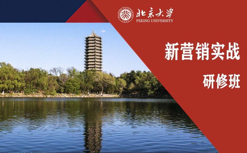 北京大 学新营销实战研修班