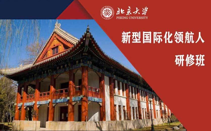 北京大学光华管理学院新型国际化领航人研修班
