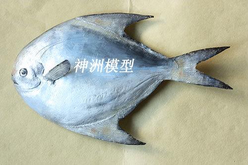 鱼类模型3
