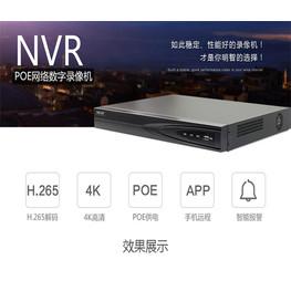 海康威视DS-7816NB-K2/16P 海康16路网络录像机 双盘带16口POE