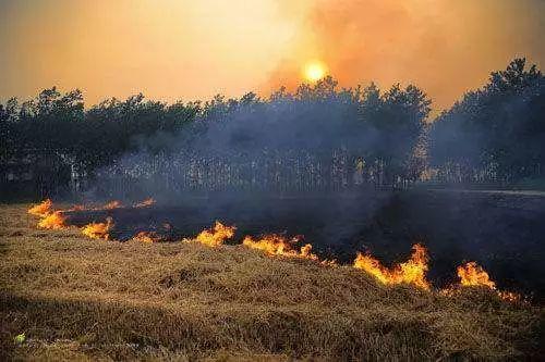 河北省已安装2206个电棒电棍秸秆露天焚烧