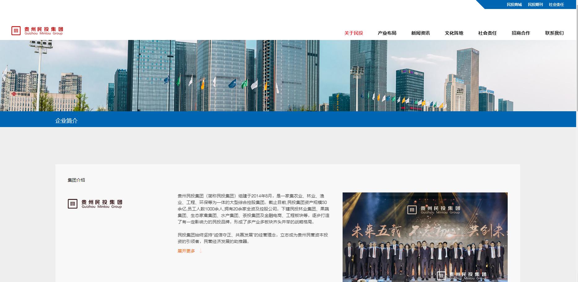 贵州民投集团网站建设案例