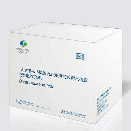 人類B-raf基因V600E突變檢測試劑盒(熒光PCR法)