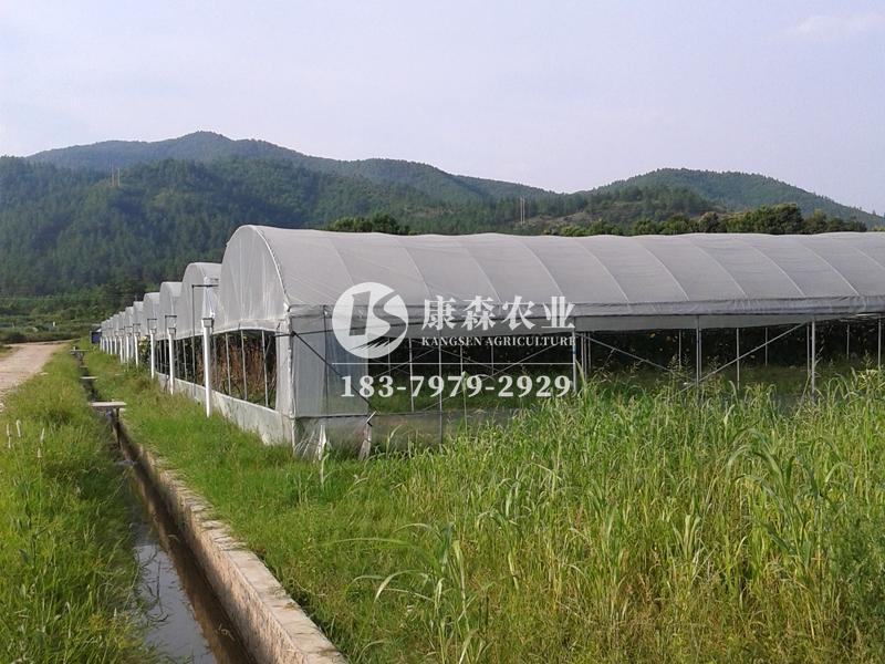 江西温室大棚厂家