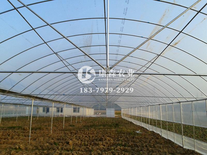 龙南(蔬菜)温室大棚