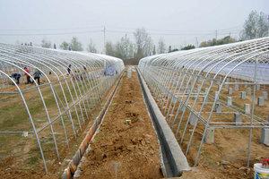 单体温室大棚造价