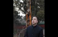 <b>国学文化专家—张天和老师</b>