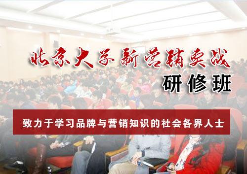 北京大学新营销实战 研修班