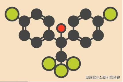 重庆seo说下蜘蛛池的原理和作用有多强