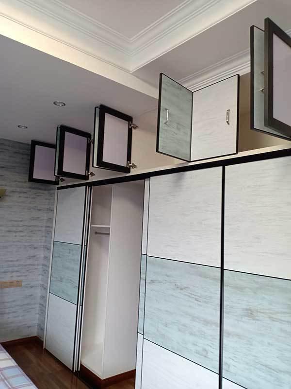 平安树生态板衣柜及定制衣柜门