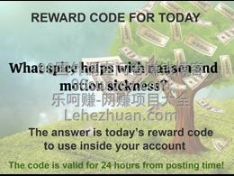 LS国外问卷赚钱网站20200711问答