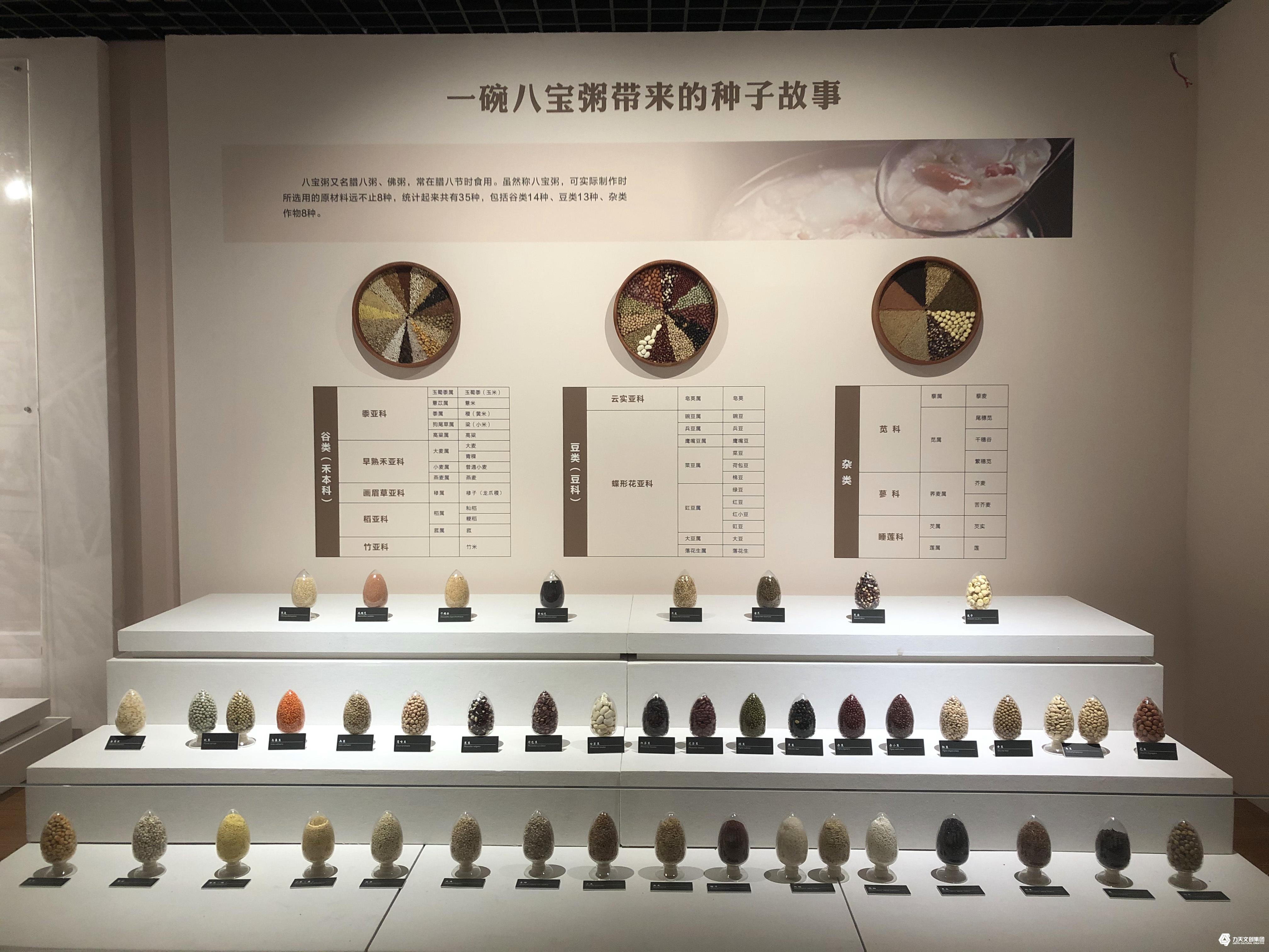华南农业博物馆   农业博物馆  华南农业文明   新型教育空间  根植实物标本展品