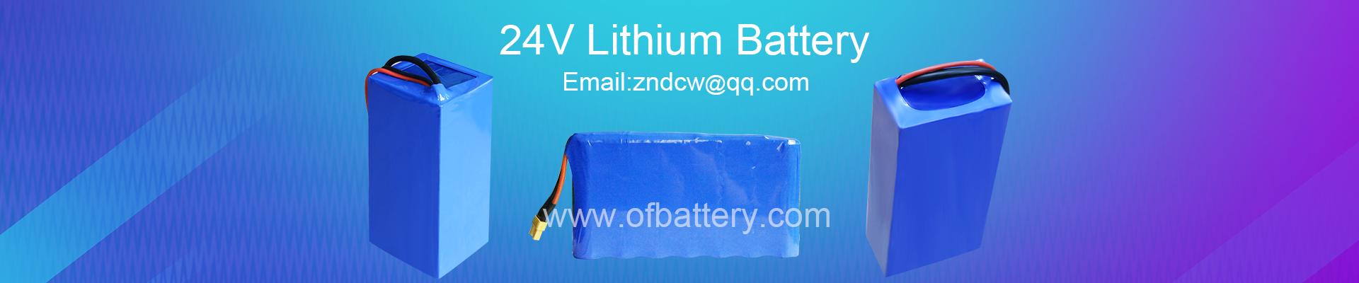 Lithium battery technology