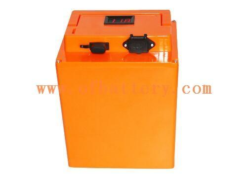 Performance and structure of 48V electric vehicle battery
