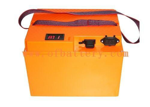 this is 48V electric car battery