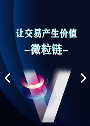 直销软件开发平台VERL微粒链APP