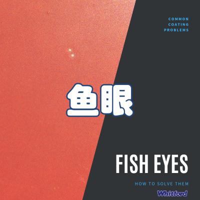 鱼眼-常见Xylan喷涂问题解决方案