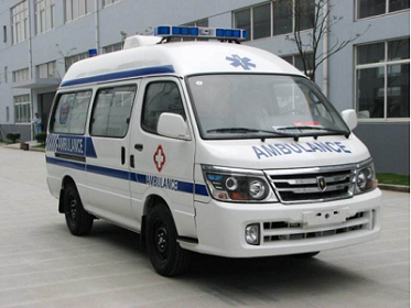 金杯海獅救護車
