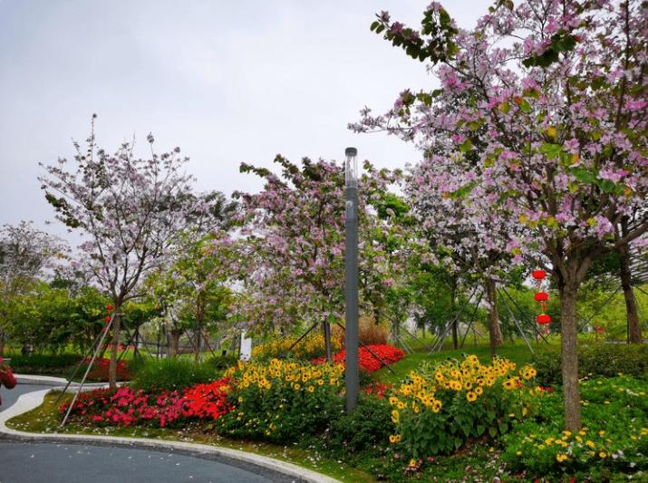 前海紫荆园