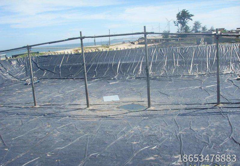 Impervious geomembrane for shrimp pond