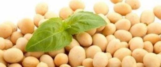 豆制品污水处理,豆制品废水处理