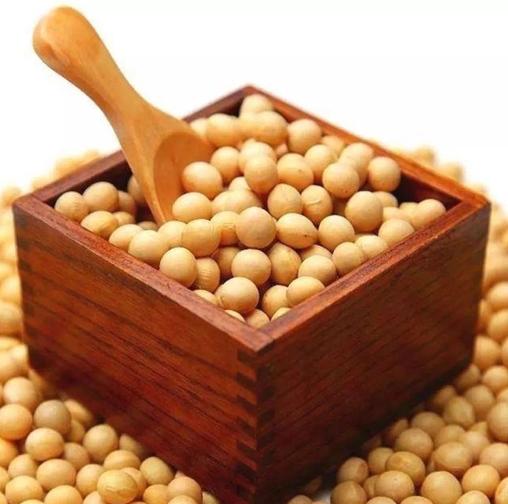 豆制品废水处理技术及工艺