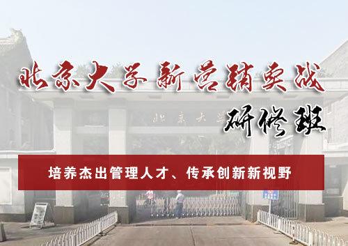 北京大学 新营销实战研修班