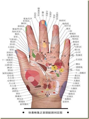 手相与健康图解