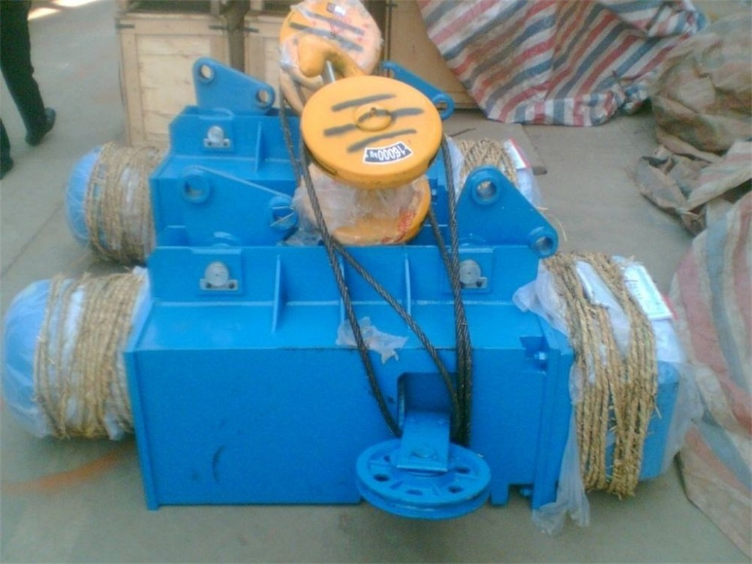 Electric Wire Rope Hoist For Sale