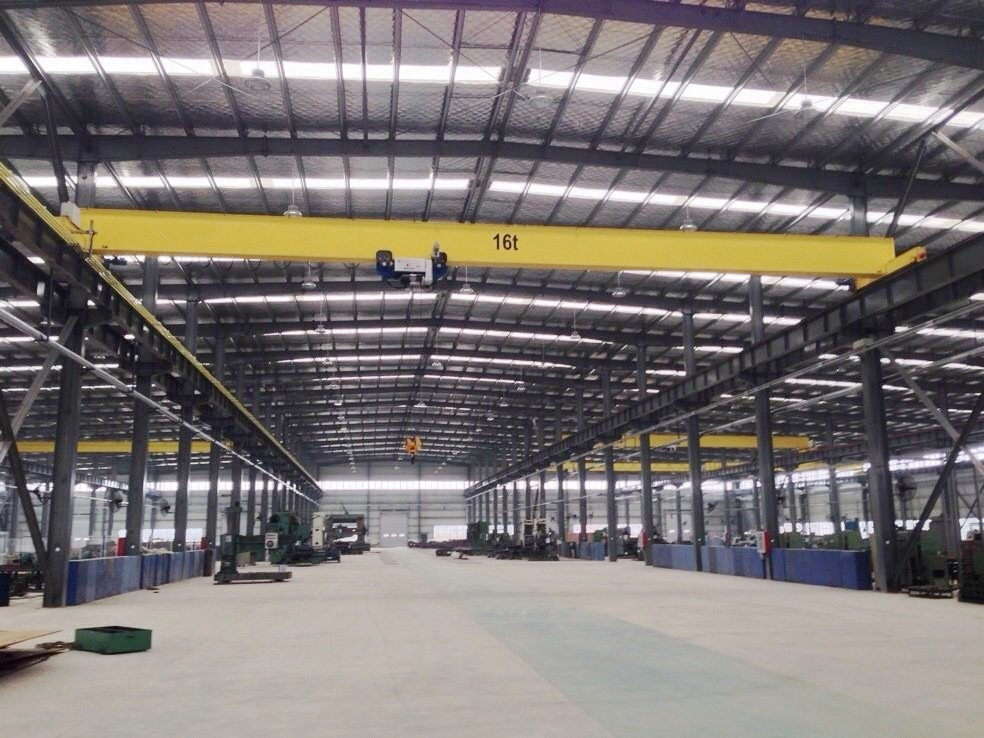 LDP Low Headroom Overhead Crane