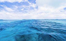 海水入侵调查