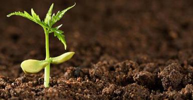 土壤检测,地下水检测,土壤和地下水检测