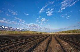 农用地土壤检测