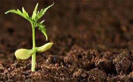 污泥检测,污泥检测机构,污泥危险废物鉴别
