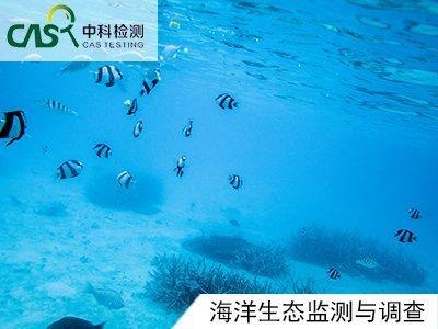 海洋生态监测与调查
