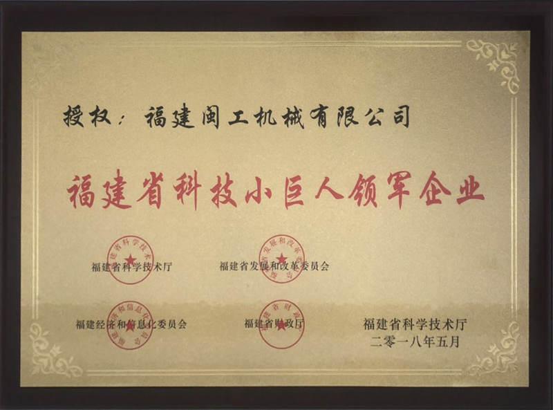 Fujian Province Tech Giant Leading Enterprise