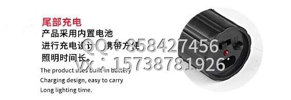 1101型带强光电筒式电击棒