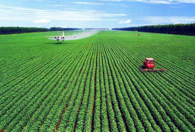 農業公司起名