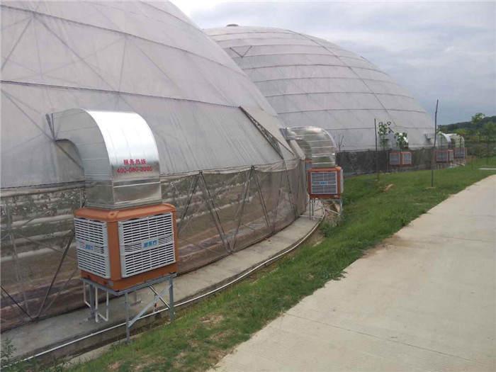 盈香植物園降溫工程案例