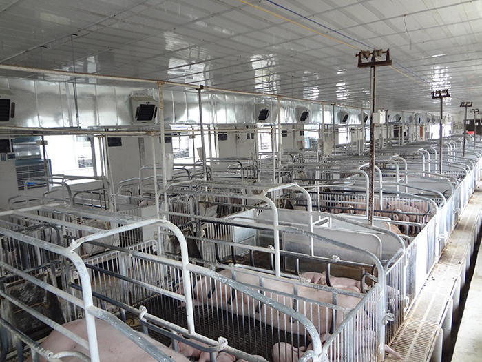 聯豐農場降溫工程案例