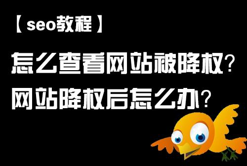 「seo教程」怎么查看网站被降权?网站降权后怎么办?