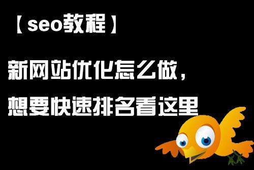 「seo教程」新网站优化怎么做,想要快速排名看这里