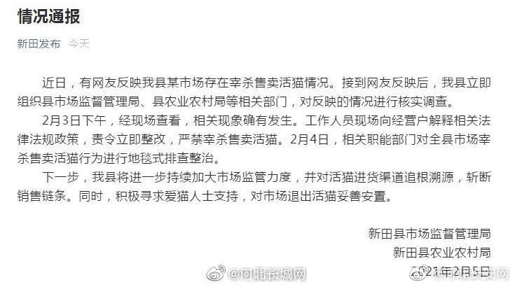 永州宰活猫售卖_永州宰猫最新回应_宰杀猫犯法吗_舆情热点新闻