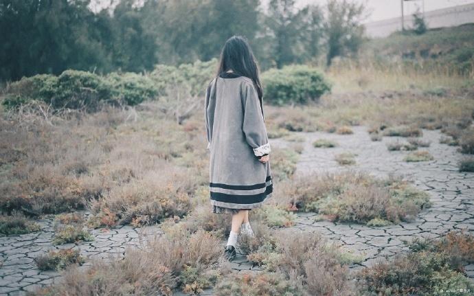 凰途-古代言情小说-主角: 柳轻眉, 景明