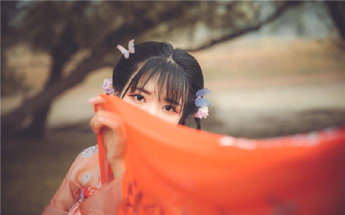 护花战帝-都市情感小说-主角: 林枫, 苏婉如