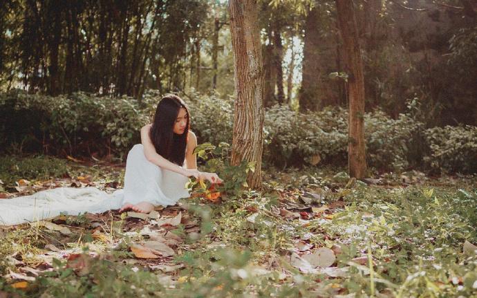 护妻狂魔-任清风, 柳清瑶-都市情感小说
