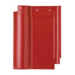 LZ 6P09 大红-平面